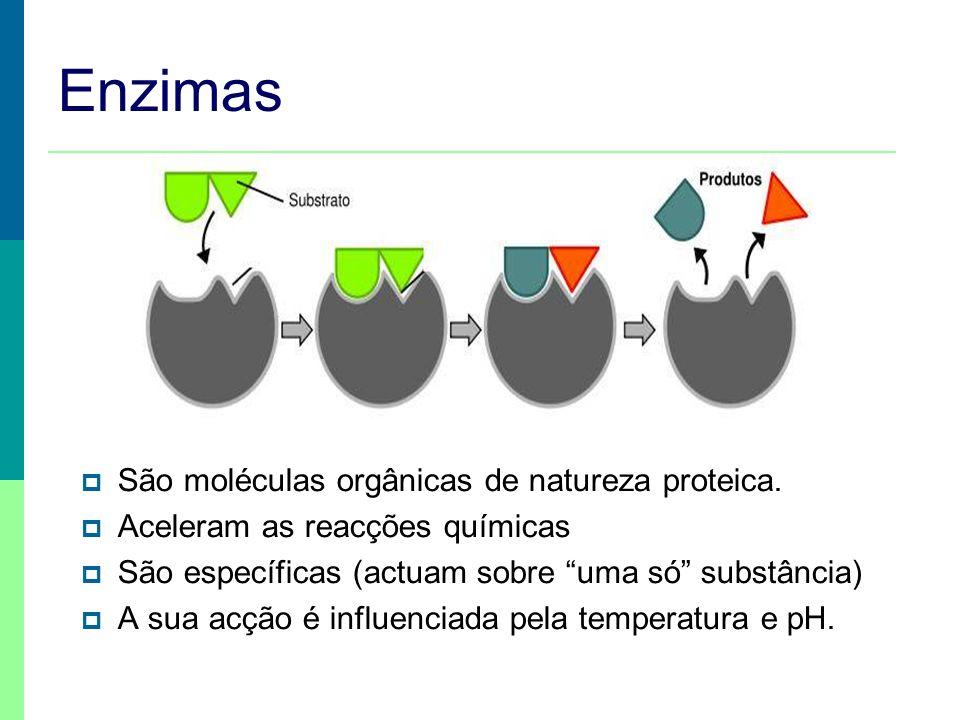 Digestão / glícidos Polissacarídeo Dissacarídeo Monossacarídeo enzimas