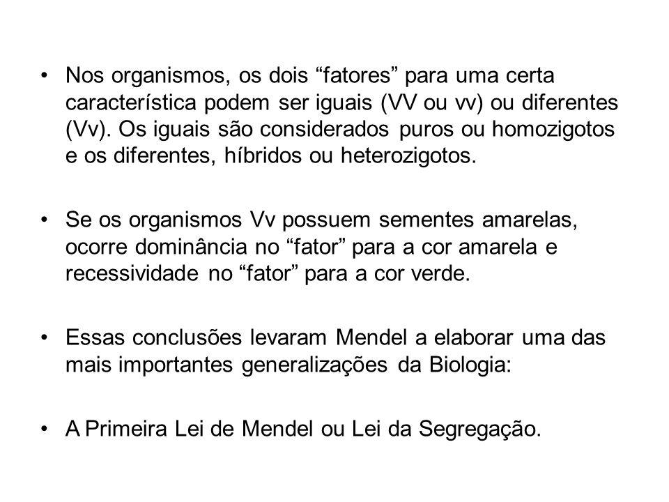 Primeira Lei de Mendel Cada caráter é condicionado por dois genes, um deles proveniente do pai e o outro da mãe.