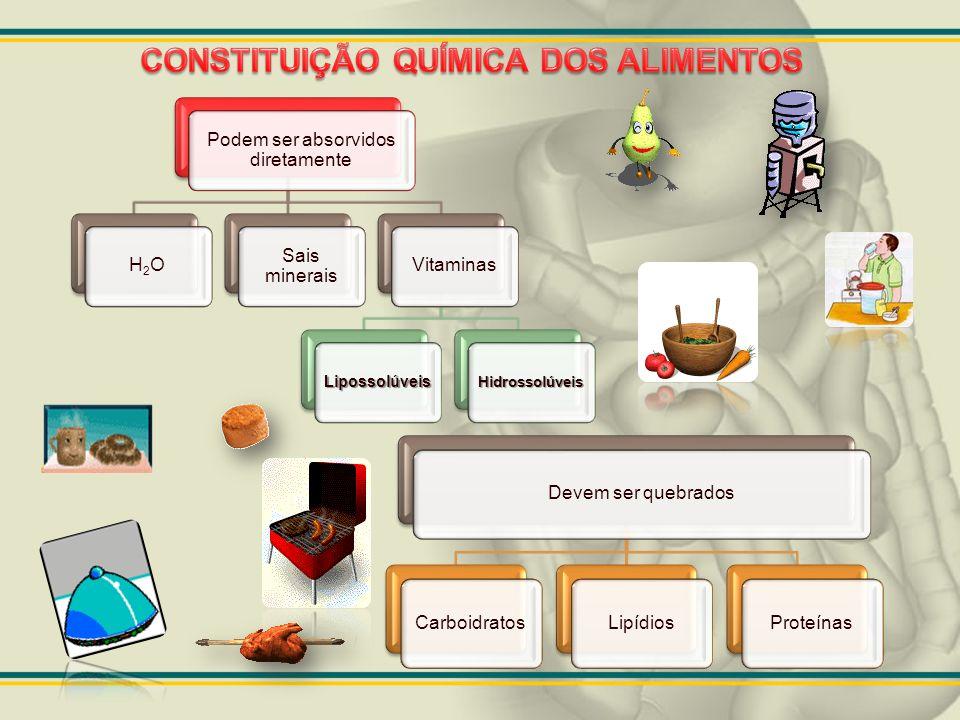 Animações bem legais http://www.kurtnavigator.com.br/sd/sistema-digestivo.swf http://smartkids.com.br/conteudo/desenhos-animados/sistema-digestorio.swf http://www.cidadedosjogos.com.br/dados/3772_digestorio.swf Animações bem legais http://www.kurtnavigator.com.br/sd/sistema-digestivo.swf http://smartkids.com.br/conteudo/desenhos-animados/sistema-digestorio.swf http://www.cidadedosjogos.com.br/dados/3772_digestorio.swf