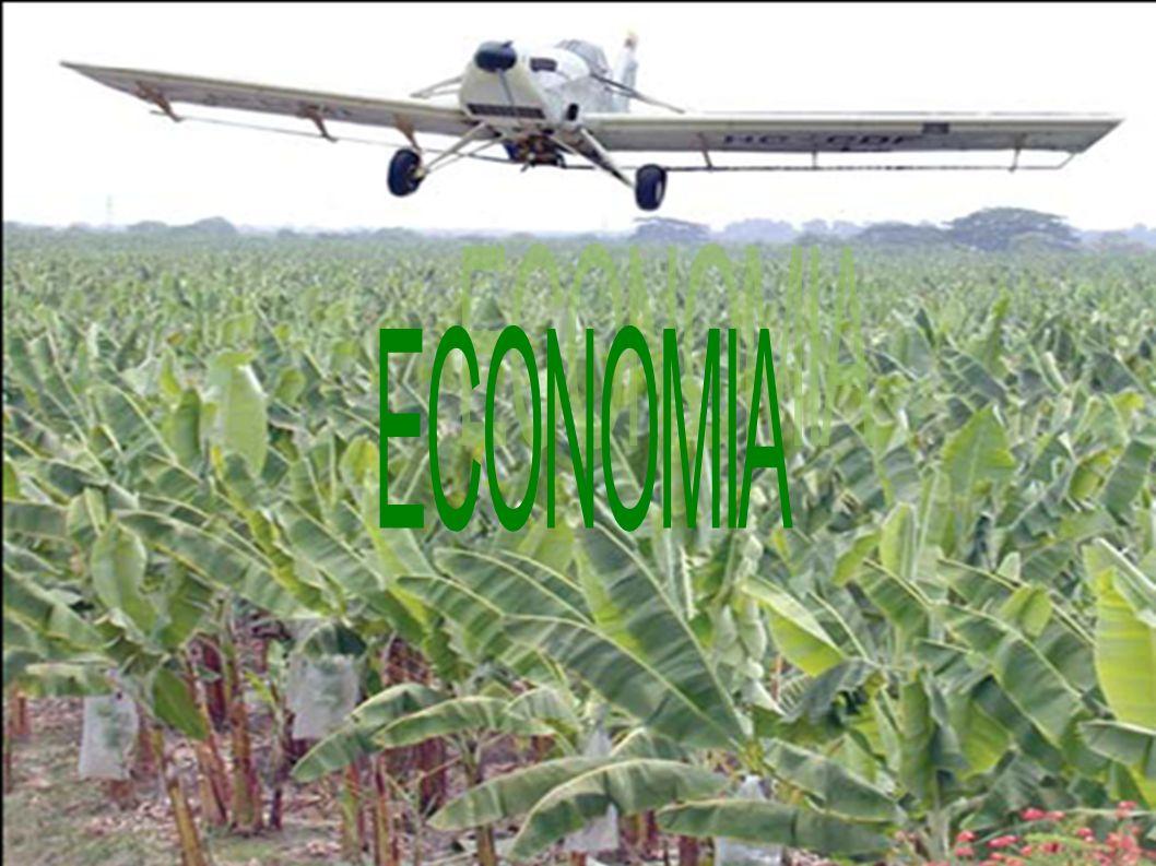 Economia da Colômbia A Colômbia é o terceiro país mais rico da América do Sul, atrás apenas de Brasil e Argentina.ColômbiaAmérica do SulBrasilArgentina É também um dos países mais ricos em recursos naturais da América do Sul.
