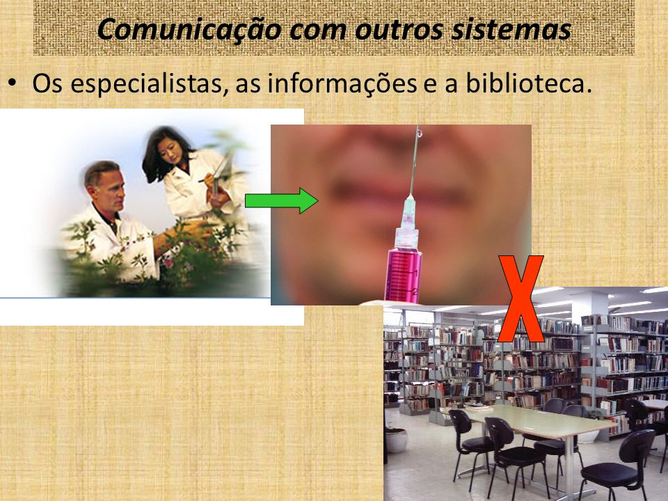 Comunicação com outros sistemas O usuário brasileiro pode se abastecer de informações em pelo menos quatro outras fontes que não o sistema bibliotecário: