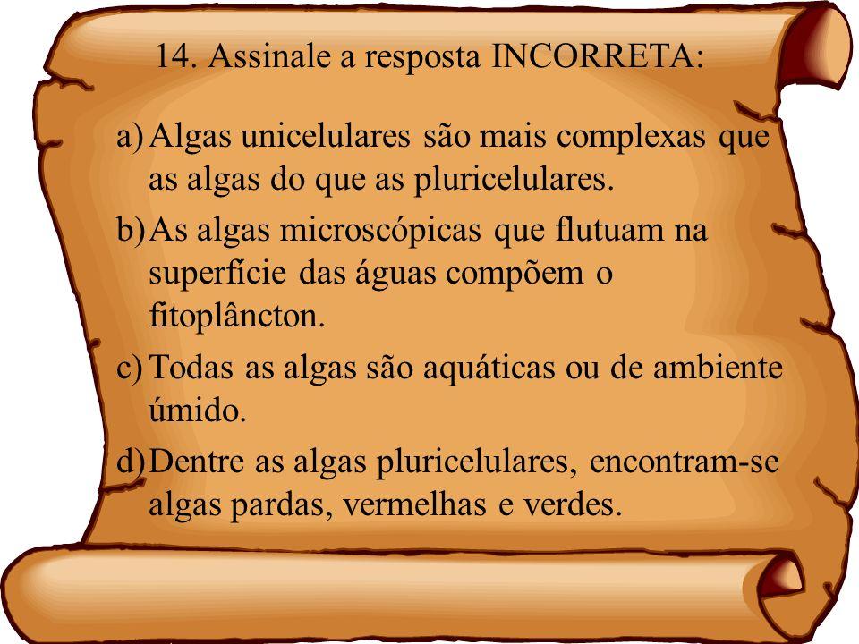 15.Sobre as algas é CORRETO afirmar que: a)As algas são seres que não possuem clorofila.