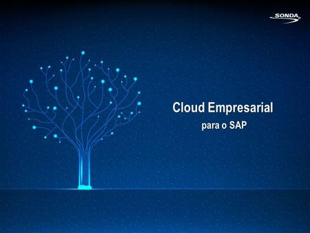 Cloud Empresarial para o SAP. 2 O que é Cloud Computing?