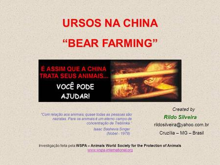 "URSOS NA CHINA ""BEAR FARMING"""