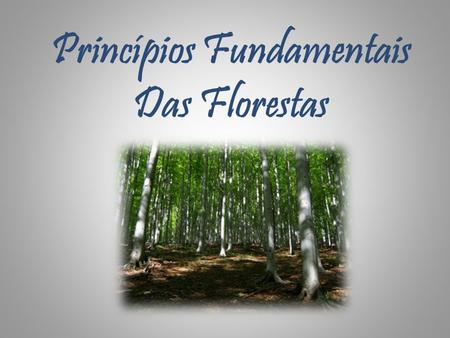 Princípios Fundamentais Das Florestas