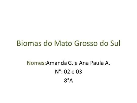 Biomas do Mato Grosso do Sul Nomes:Amanda G. e Ana Paula A. N°: 02 e 03 8°A.