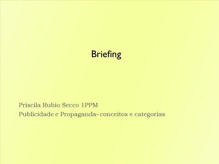 Briefing Priscila Rubio Secco 1PPM