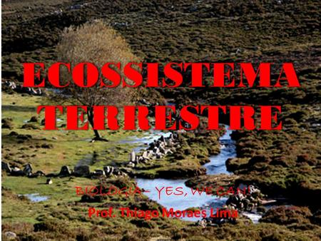 ECOSSISTEMA TERRESTRE BIOLOGIA – YES, WE CAN! Prof. Thiago Moraes Lima.