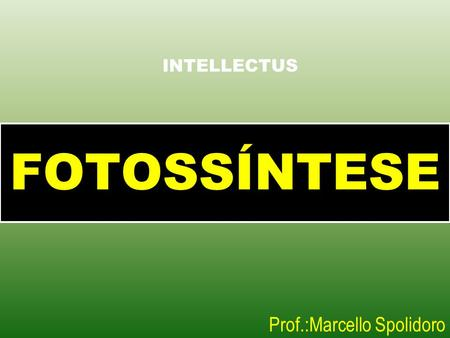 FOTOSSÍNTESE Prof.:Marcello Spolidoro INTELLECTUS.