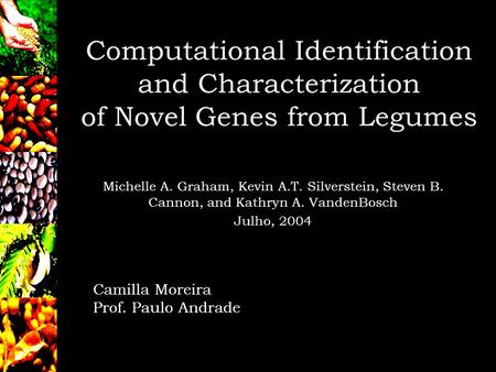Computational Identification and Characterization of Novel Genes from Legumes Michelle A. Graham, Kevin A.T. Silverstein, Steven B. Cannon, and Kathryn.