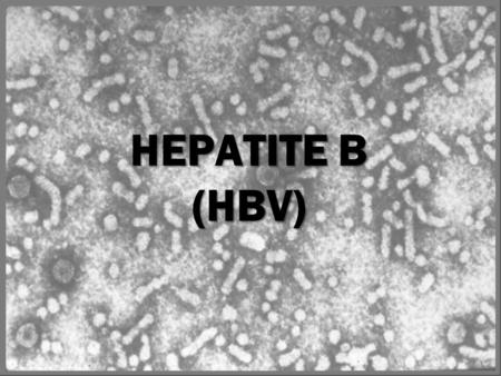 HEPATITE B (HBV) Hepatitis B Surface Antigen (HBsAg): A serologic marker on the surface of HBV. It can be detected in high levels in serum during acute.