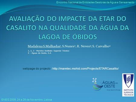 Madalena S.Malhadas 1, S.Nunes 2, R. Neves 3 ; S. Carvalho 4 webpage do projecto:  1, 2, 3 - Maretec-Instituto.