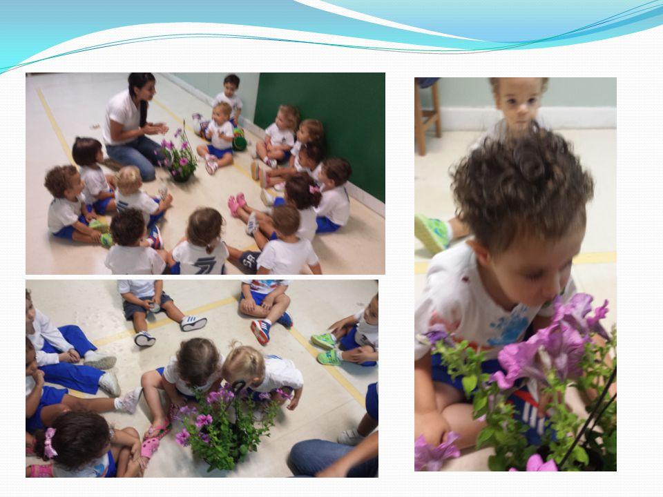 3ª semana - PALADAR As crianças adoraram identificar pela embalagem dos alimentos os diversos sabores.