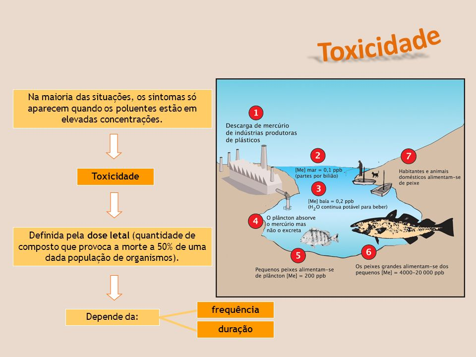 Toxicidade aguda A toxidade aguda – é a dose de substância que provoca a morte imediata (em 24 horas) em cada um de dois elementos de uma espécie.