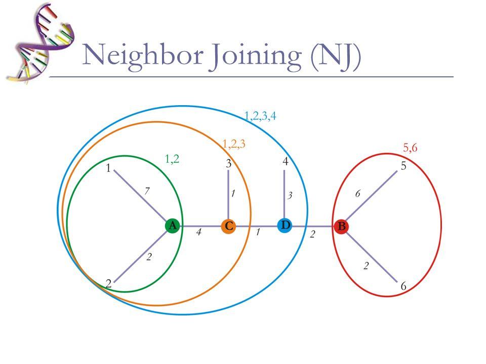 Algoritmo: Início com uma topologia em estrela Somar todos os tamanhos de ramos da árvore inicial (S 0 ) Tomar um par de vizinhos, estabelecer a distância entre este par e todos os outros Estimar S i,j Repetir o procedimento para todos os pares de vizinhos até encontrar o menor S.