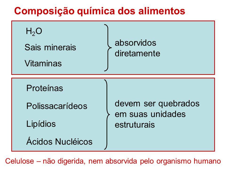 Proteínasaminoácidos Unidades estruturais dos nutrientes Polissacarídeosmonossacarídeos Lipídiosácidos graxos e glicerol Ácidos Nucléicosnucleotídeos