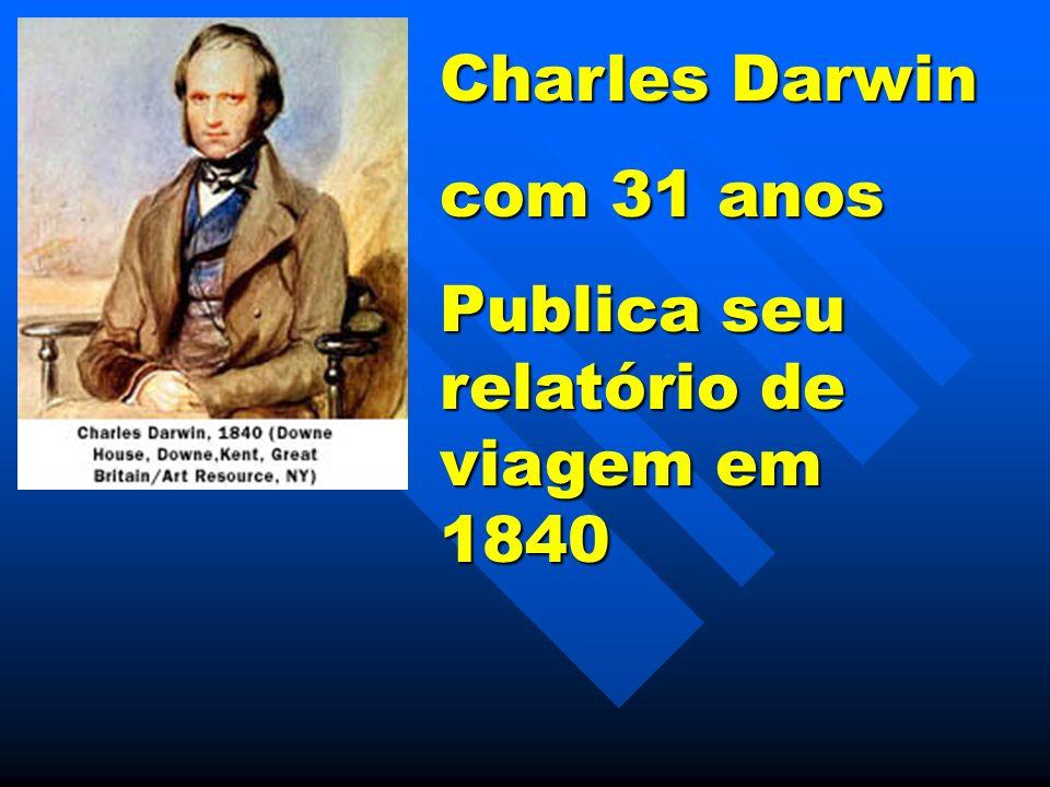 Relatório de Pesquisa em História Natural e Geologia dos Países visitados durante a viagem ao redor do mundo no Beagle Charles Darwin