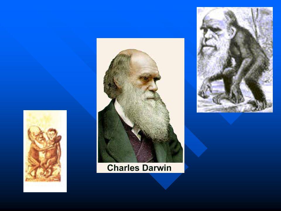 1877 Darwin recebe um título honorífico da Universidade de Cambridge 1882 1882