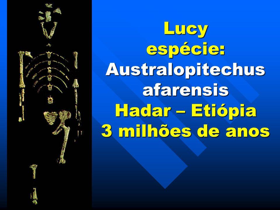 Caverna de Lascaux na França – 16 mil anos