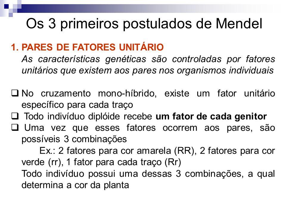 Os 3 primeiros postulados de Mendel 2.