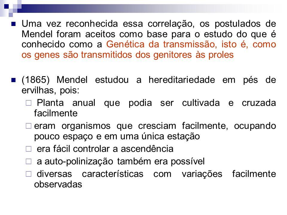 Definições Genéticas Gene: uma partícula discreta de hereditariedade que controla uma característica (Ex.: formato ou aparência da ervilha) Característica: Caráter, traço Fenótipo: Aspecto da característica, que pode ser (ou não) visível É uma característica exibida por um alelo que distingue um indivíduo de outro (Ex.: redondo x rugoso; alto x baixo) Genótipo: Constituição genética correspondente a um determinado fenótipo É um par de alelos que um indivíduo específico possui (RR, Rr ou rr)