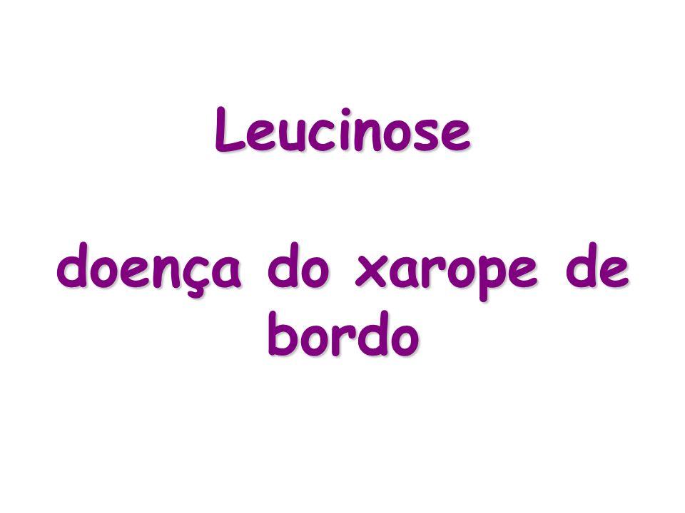 Leucinose Aminoacidopatia caracterizada por aumento acentuado na concentração dos aminoácidos essenciais da cadeira ramificada Leucina, isoleucina e valina Herança autossômica recessiva Incidência: – 1:500.000