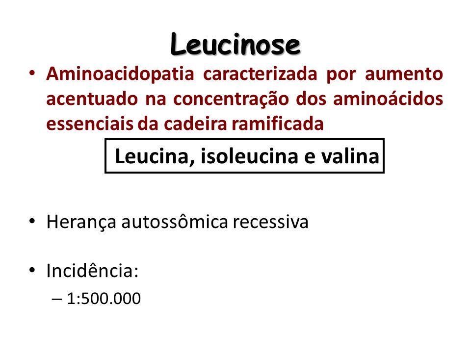 Leucinose Causa: Deficiência no complexo multienzimático das desidrogenases dos ácidos alfa-cetônicos de cadeia ramificada (BCKAD), estes aminoácidos e alguns compostos deles derivados acumulam-se em quantidades tóxicas para o organismo.