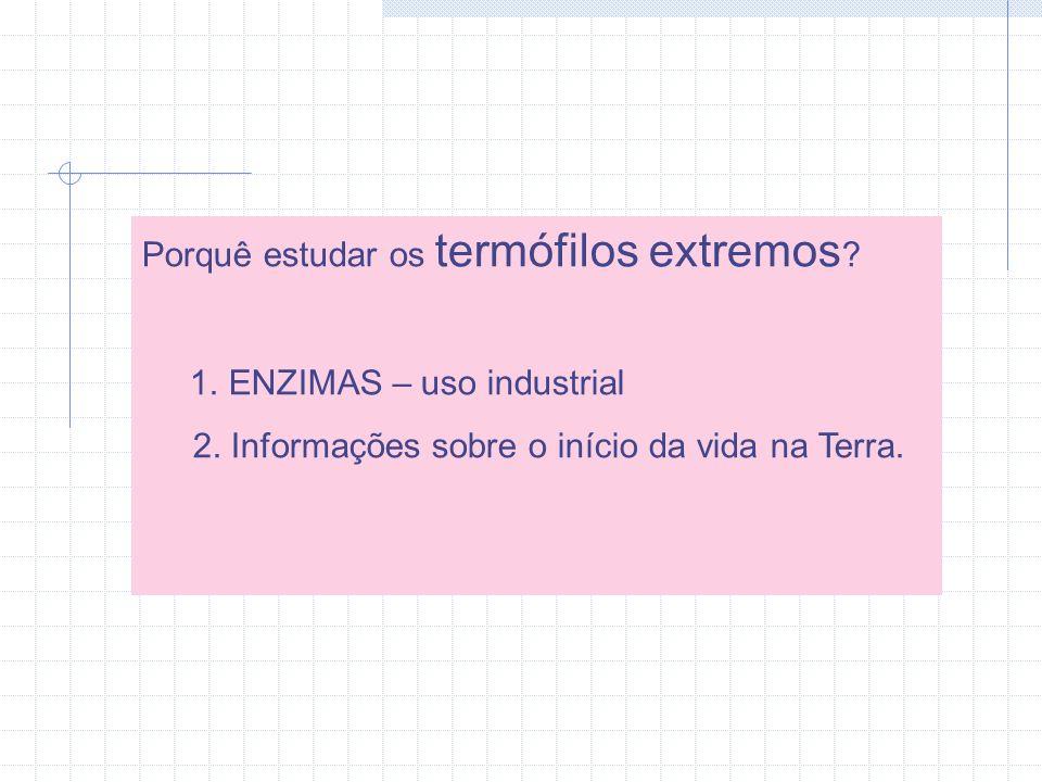 Aplicações dos hipertermófilos Exemplos: Diagnósticos (Taq polimerase) Indústria de Papel e celulose Indústria do amido