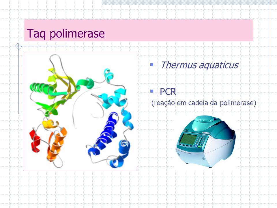 Branqueamento de papel Químico (dióxido de cloro, ozônio, peróxido de hidrogênio e altas temperaturas) Poluentes Hemicelulases e xilanases de hipertermófilos.