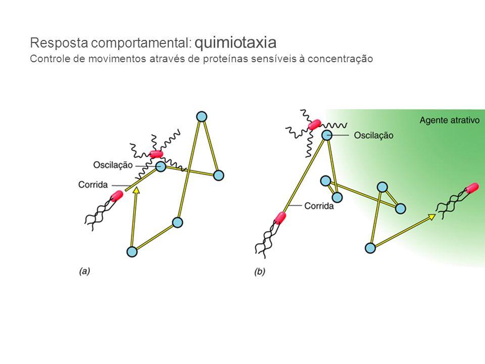 Outra forma de motilidade em procariotos