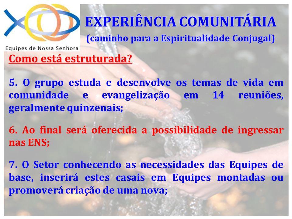 Após a Experiência Comunitária, há outro momento de informação ( que deverá ser realizado pelo CRS com a participação do futuro Casal Piloto e do Casal que coordenou a EC ).