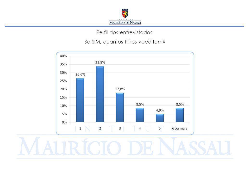 Perfil dos entrevistados: Você é a principal fonte de renda de sua família/casa?