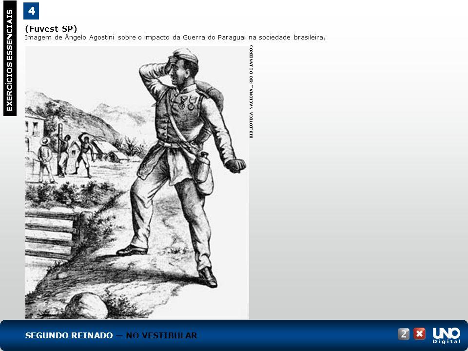 4 EXERC Í CIOS ESSENCIAIS RESPOSTA: A figura mostra as contradições da permanência da escravidão no Brasil.