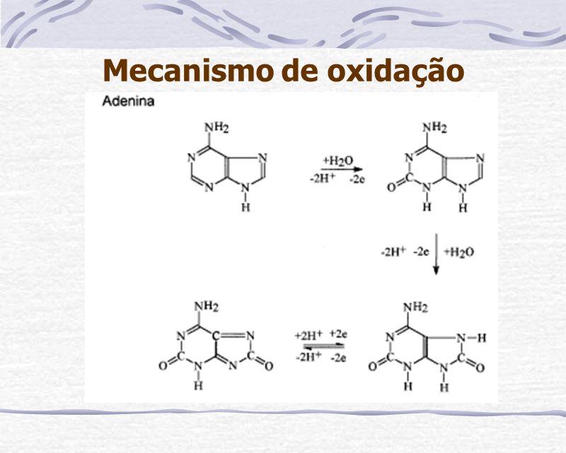 Modificação do Eletrodo Em potencias positivos (+1,4V ) as bases purínicas (guanina e adenina) do DNA degradado em solução são oxidadas na superfície do eletrodo recoberto com filme de DNA modificando-o de forma permanente e dando origem a uma fase condutora.
