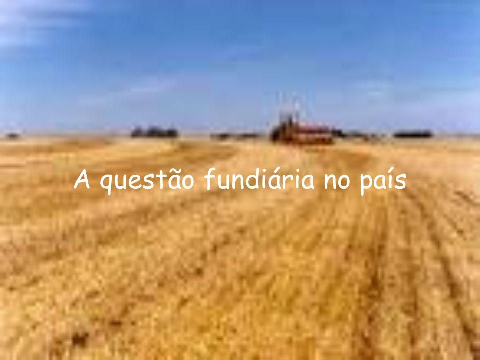 Número de estabelecimentos rurais x área ocupada