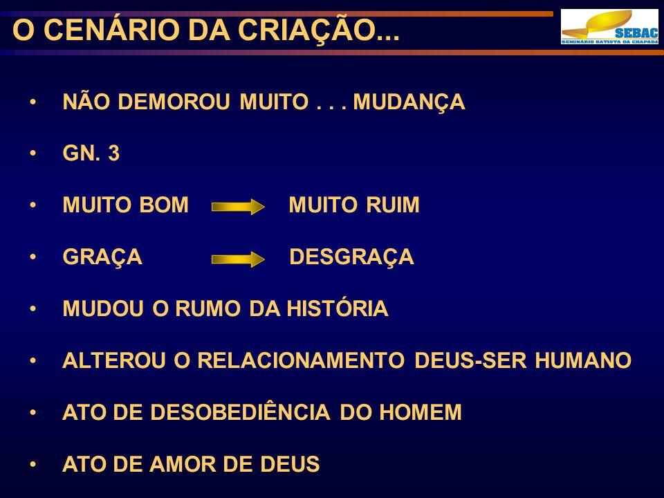O CENÁRIO DA CRIAÇÃO...
