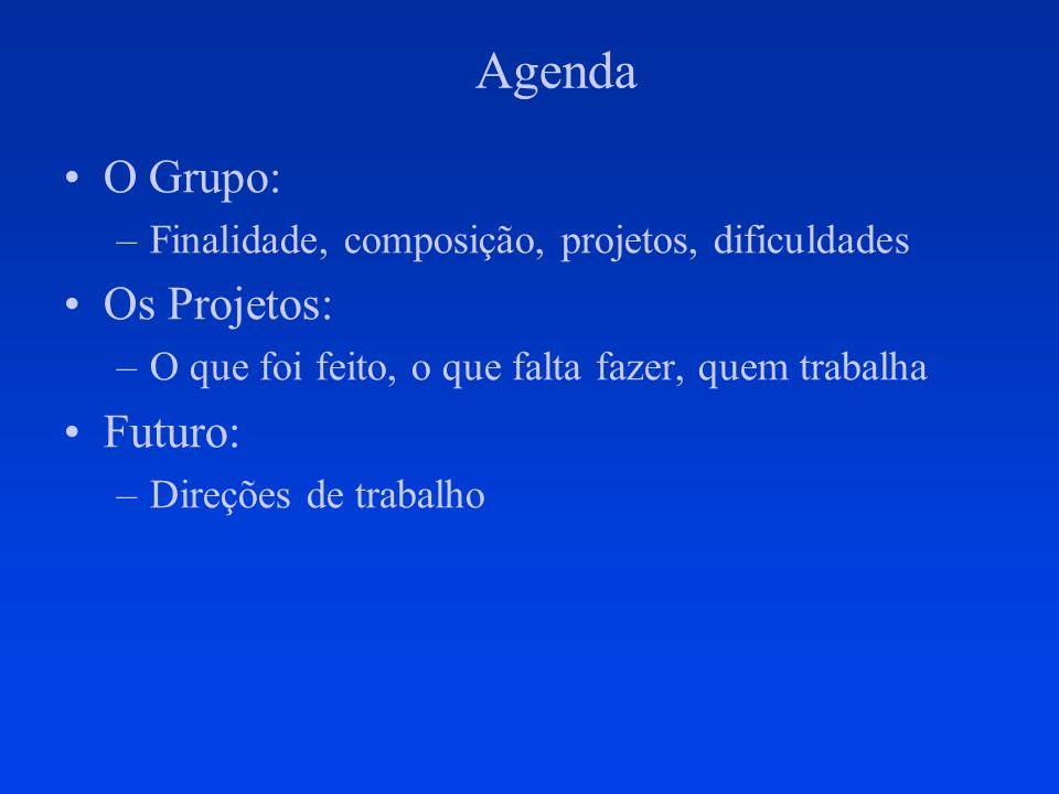 Agenda O Grupo:O Grupo: –Finalidade, composição, projetos, dificuldades Os Projetos: –O que foi feito, o que falta fazer, quem trabalha Futuro: –Direções de trabalho