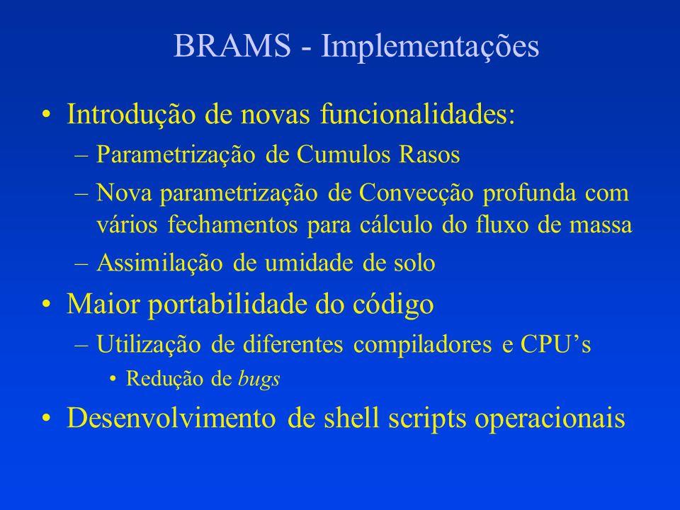 BRAMS – Documentação e controle Documentação: –Novas funcionalidades introduzidas: Parametrizações de Cumulus Rasos e de Convecção Profunda baseado em G.Grell (2002), com várias opções de fechamento Assimilação de Umidade de Solo Heterogênea através de arquivo Suítes operacionais para Previsão e Ciclo de Assimilação com controle de qualidade Guias para inserção de novos módulos –http://tucupi.cptec.inpe.br/hpc/guide.PDF Treinamento nos centros regionais Controle de Versões centralizado no CPTEC –Muitos grupos de desenvolvimento: CPTEC, IME/USP, IAG/USP, ATMET