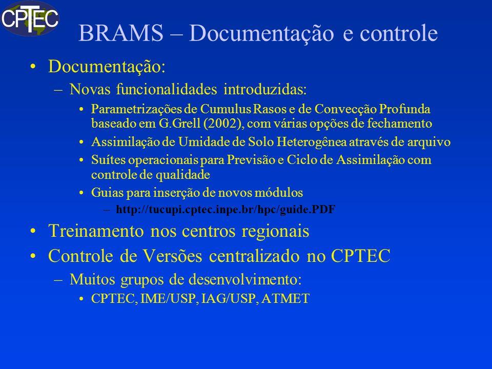 BRAMS - Características do Software BRAMS 2.0: –FORTRAN 90 + de 91000 linhas –Alocação dinâmica de dados (Fortran 90) –Substituição de todos os INCLUDE + COMMON por MODULE (Fortran 90) –Declaração de todas as variáveis –Correção de Bugs –Portabilidade: Compiladores: PGI (x86), Intel F95 (x86, Itanium), NEC F90 (sx-6) –Avaliação de desempenho PAPI (x86, Itanium) Proginfo (NEC sx-6)