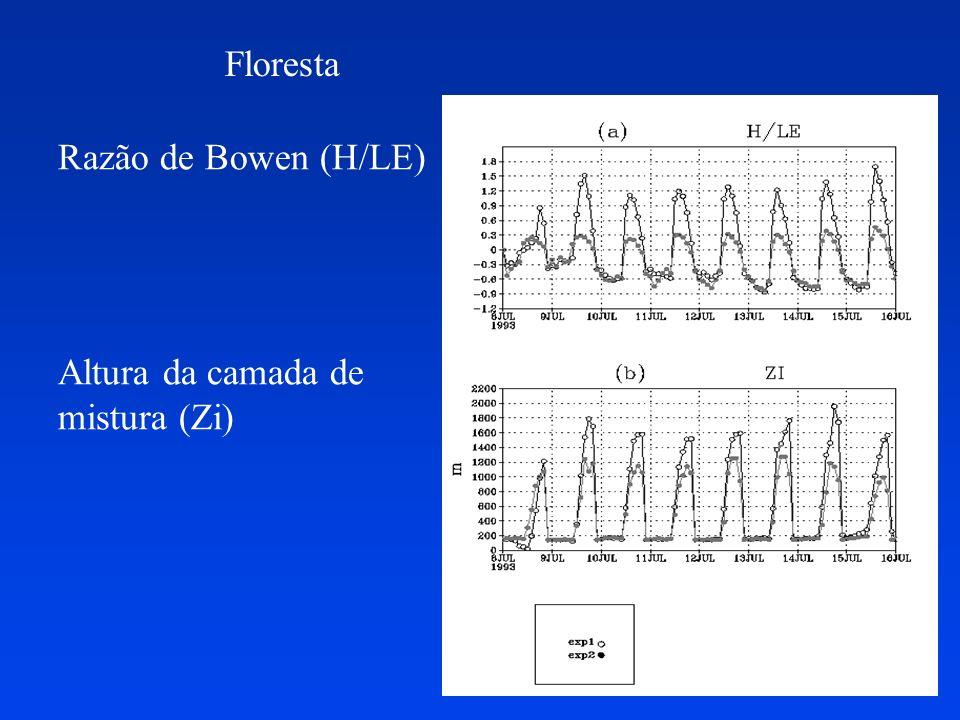 Parametrização de cumulus profundos Grell (1993) e Grell e Devenyi (2002) fluxo de massa com vários tipos diferentes de fechamentos (Arakawa e Schubert, Grell, Kain e Fritsch, Low Level Omega, Kuo.) técnicas estatísticas para determinação do fluxo de massa baseado num ensemble de fechamentos inclui o efeito de correntes descendentes adequado para resoluções espaciais entre 20 e 50 km (apropriado para modelos regionais) Campos de precipitação e modificação na dinâmica muito mais realistas.