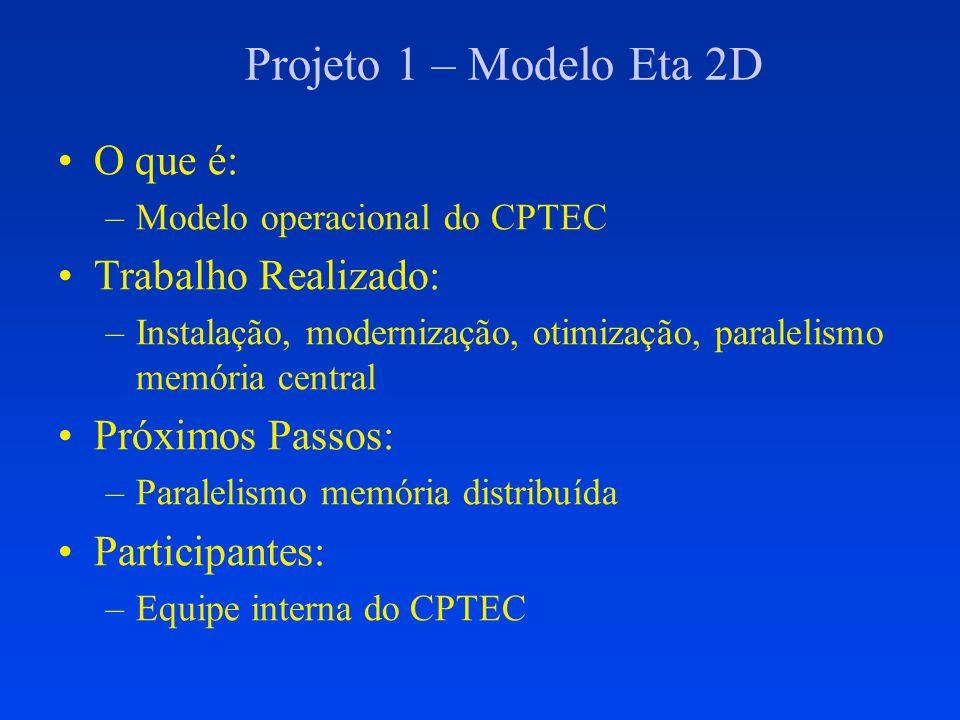 Projeto 2 – Modelo BRAMS O que é: –Modelo básico dos Centros Regionais Trabalho Realizado: –Versão 1.0 desenvolvida Próximos Passos: –Versão 2.0 em desenvolvimento –Versão 3.0 Participantes: –Projeto Finep: CPTEC + IME/USP + IAG/USP + ATMET
