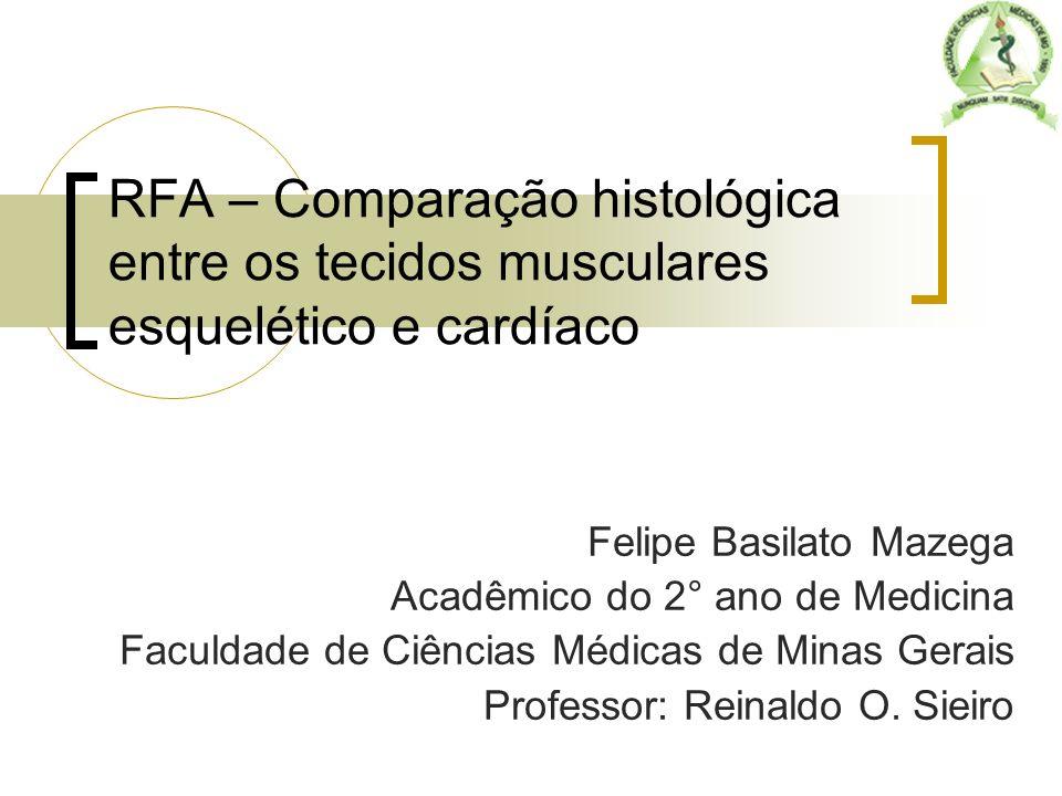 Tecido Muscular ORIGEM EMBRIONÁRIA: mesoderma FUNÇÃO: movimentos corporais CONSTITUIÇÃO - Sarcolema: Membrana plasmática e fibrilas delgadas de colágeno - Sarcoplasma: citoplasma rico em potássio, magnésio, fosfato e mitocôndrias - Retículo Sarcoplasmático: concentração elevada de íons cálcio, ligantes da troponina liberados ao serem excitados pelos túbulos T - Sarcômeros: unidades morfofuncionais do tecido muscular Felipe Basilato Mazega
