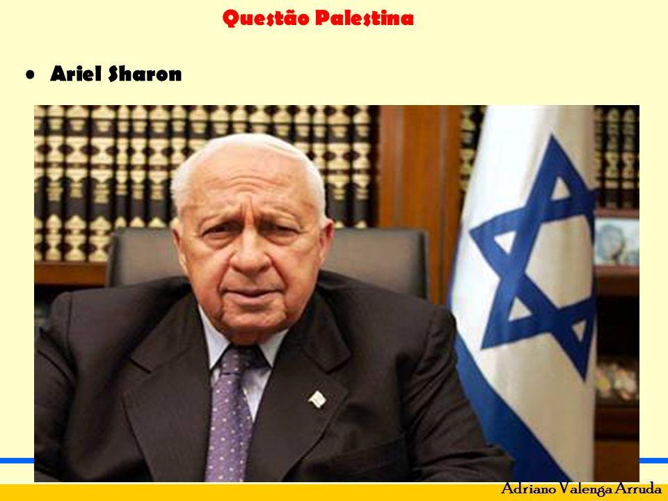 Questão Palestina Adriano Valenga Arruda Enquanto Israel não devolve as terras, nem dá nacionalidade aos palestinos, o problema continua.