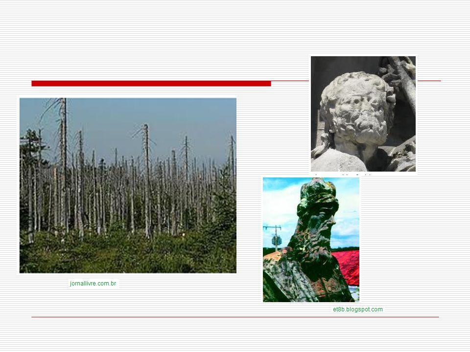 bibliografia http://www.biodieselbr.com/biodiesel /biodiesel.htm http://www.biodieselbr.com/biodiesel /biodiesel.htm http://pt.wikipedia.org/wiki/Biodiesel #Processo_de_fabrica.C3.A7.C3.A3o http://pt.wikipedia.org/wiki/Biodiesel #Processo_de_fabrica.C3.A7.C3.A3o http://carros.hsw.uol.com.br/progra ma-alcool-brasil5.htm http://carros.hsw.uol.com.br/progra ma-alcool-brasil5.htm http://carros.hsw.uol.com.br/biodiese l2.htm