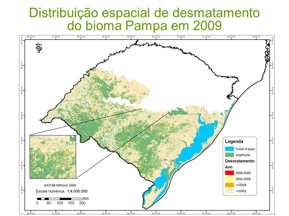 Desmatamento no Bioma Pampa ClasseAté 2008 (%)2008-2009 (%) Vegetação suprimida 53,9854,12 Vegetação remanescente 36,0835,89 Corpos dágua 9,99 Área do Bioma Pampa 177.767 km² Área desmatada (2002 -2008) Supressão de 2.183 km² (equivalente a 1,2% do bioma) Área desmatada (2008-2009) Supressão de 331 km² (equivalente a 0,18% do bioma)