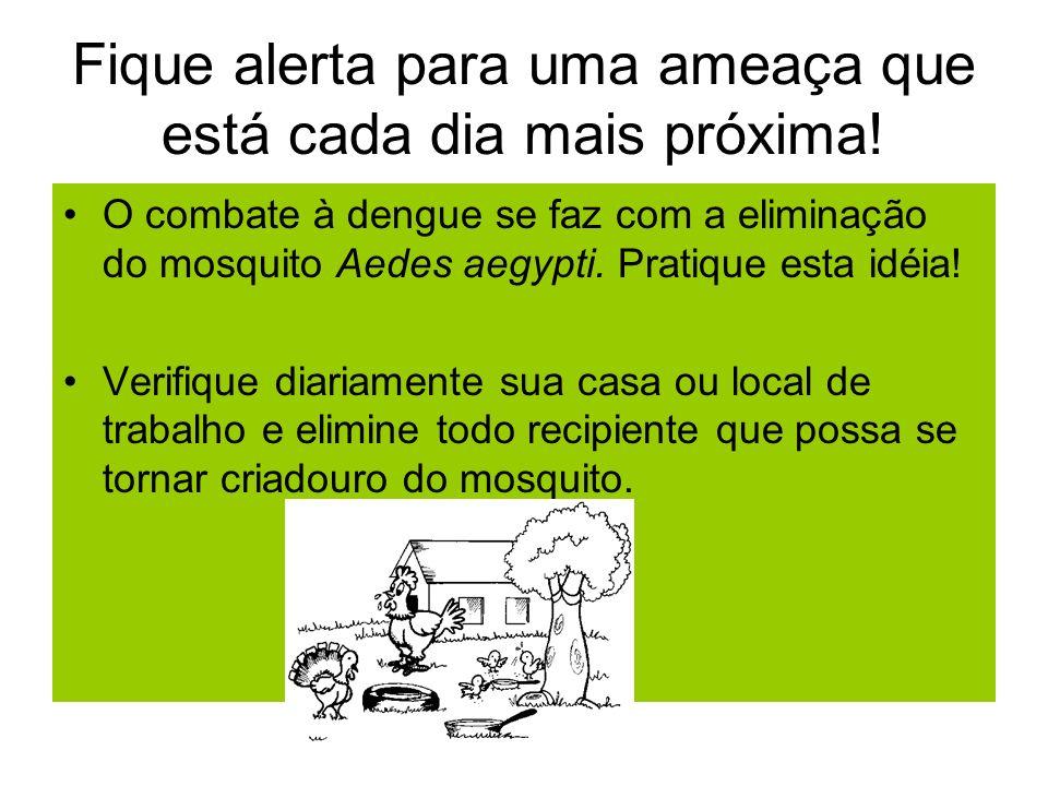 Para o mosquito da dengue não existe fronteiras.