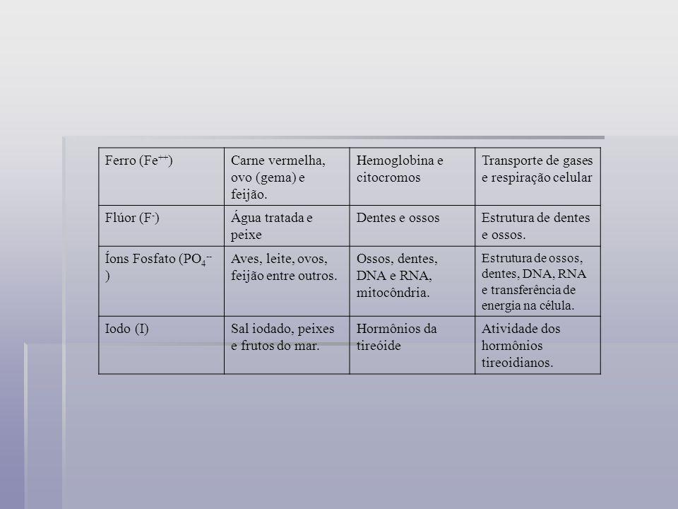 Magnésio (Mg ++ )Verduras, carnes e algumas frutas Clorofila e tecido nervoso Transmissão do impulso nervoso e fotossíntese.