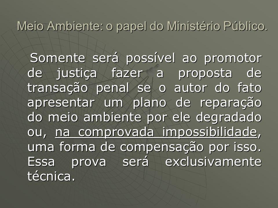 Meio Ambiente: o papel do Ministério Público.Meio Ambiente: o papel do Ministério Público.