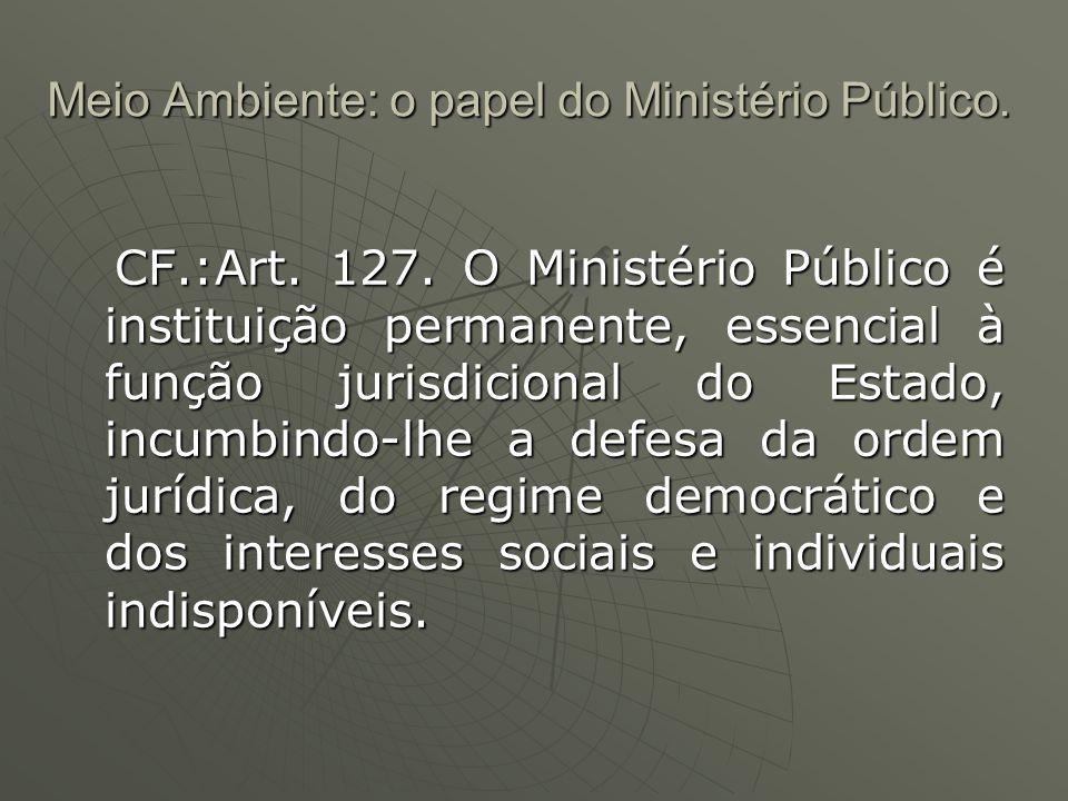 Meio Ambiente: o papel do Ministério Público.Art.