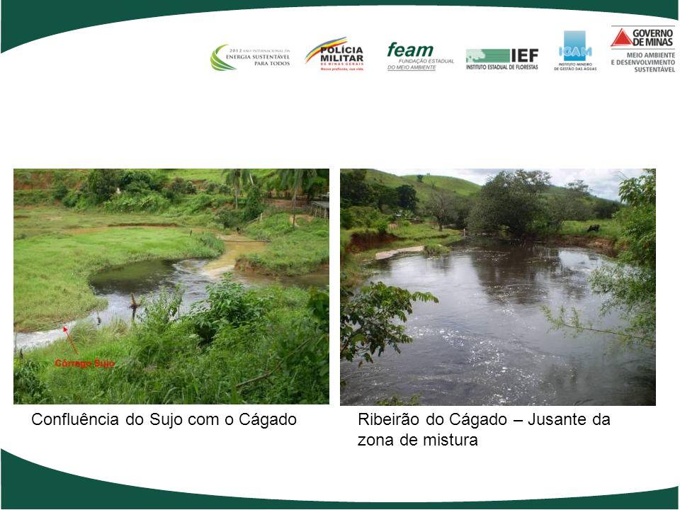 Confluência do Cágado com o PombaRio Pomba, após corredeiras, no Distrito de Aracati